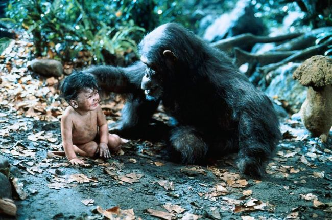 photo-greystoke-la-legende-de-tarzan-greystoke-the-legend-of-tarzan-lord-of-the-apes-1984-7
